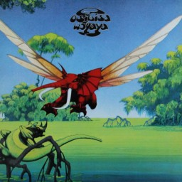 Today's Song: Move On by Osibisa